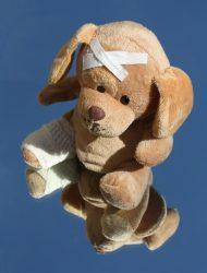 teddy-242832_960_720